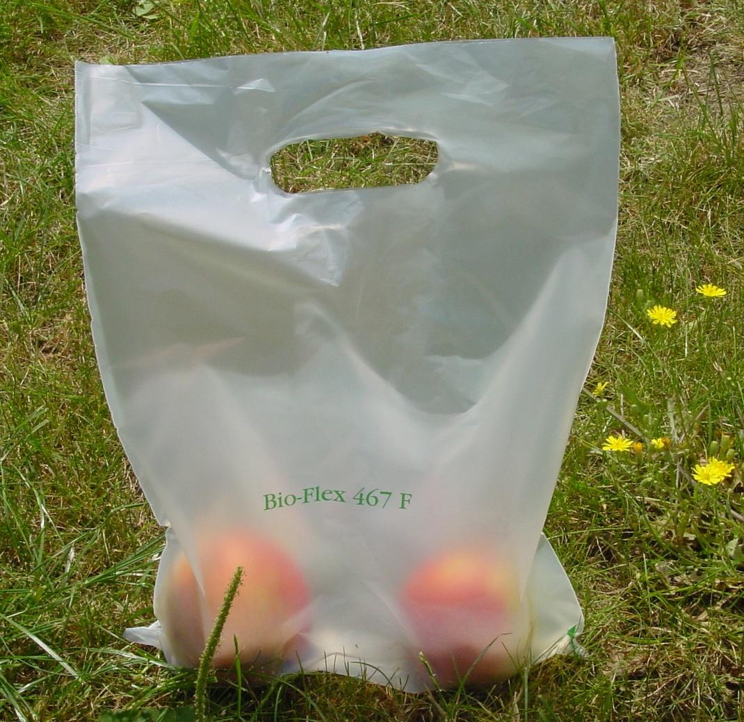 Sacchetti biodegradabili, parla Catia Bastioli: